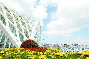 鲜花扮靓滇池国际会展中心 花团锦簇迎南博